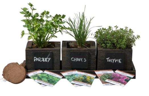 utilisez des herbes fraîches pour pimenter vos repas