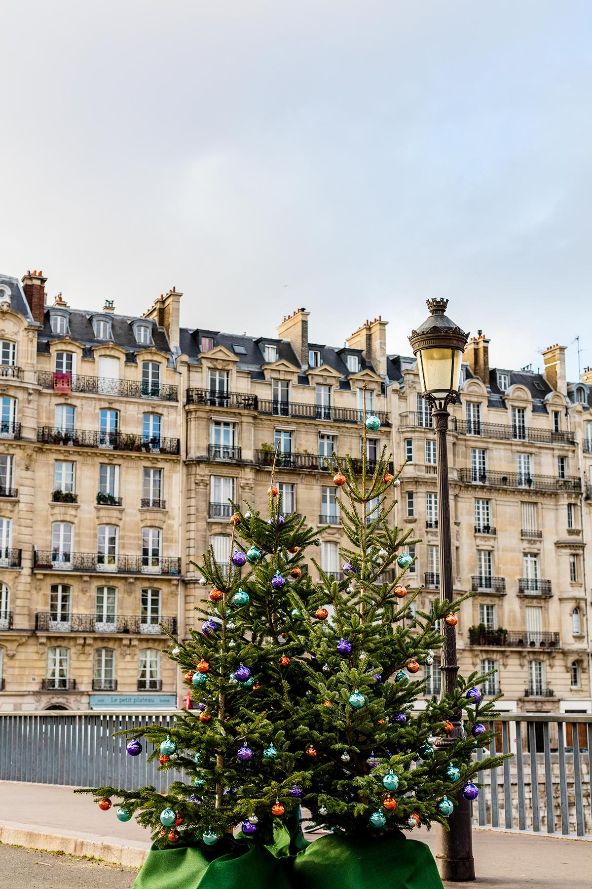 Arbres de Noël à Paris