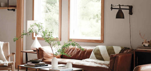 cozy living room with leather sofa and neutrals