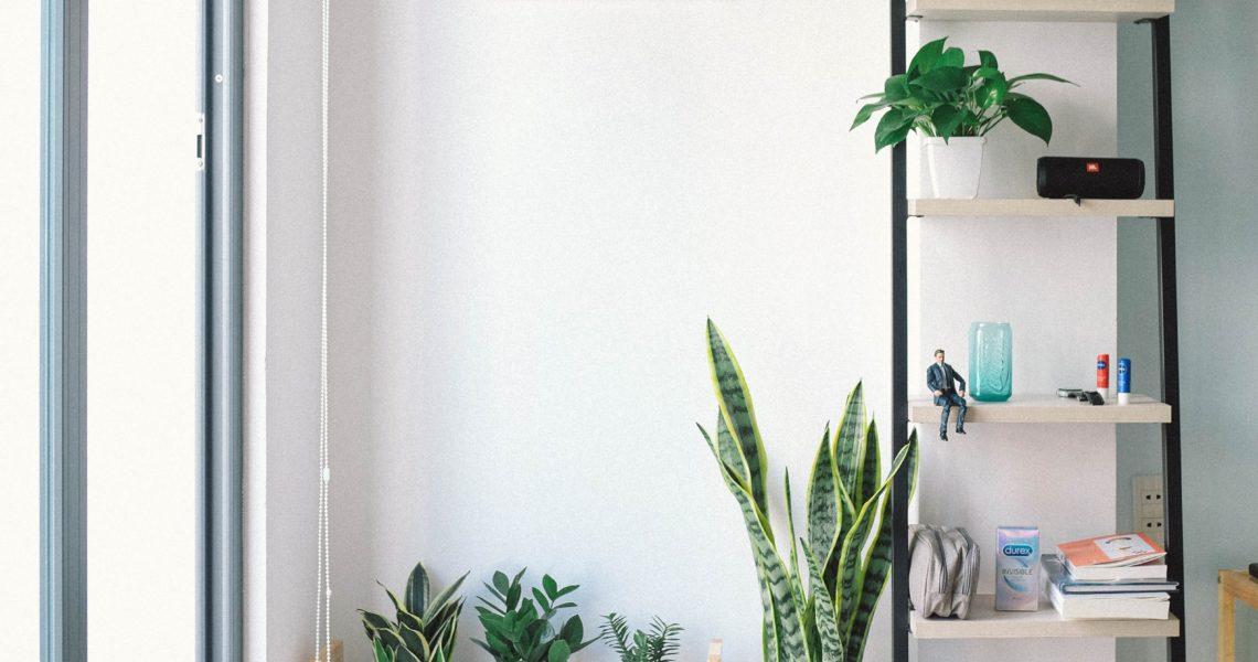 jardin d appartement